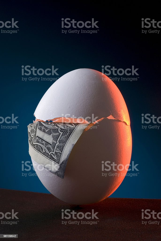 Cracked Nest Egg Investments the Fragile Dollar royalty-free stock photo