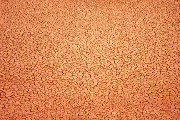 Cracked soil background Cracked clay ground into the dry season lake bed stock pictures, royalty-free photos & images