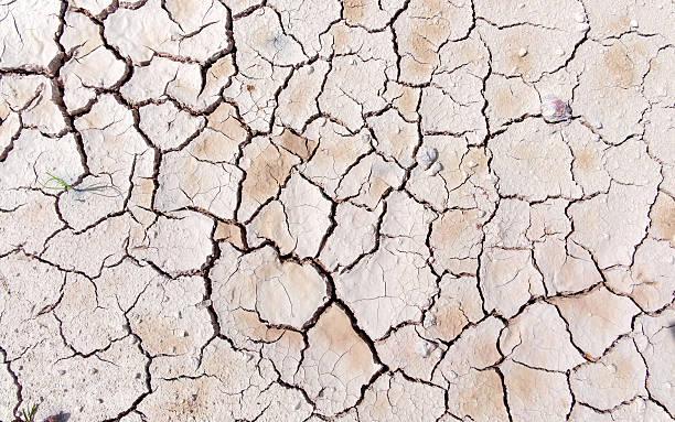Cracked soil. drought stock photo