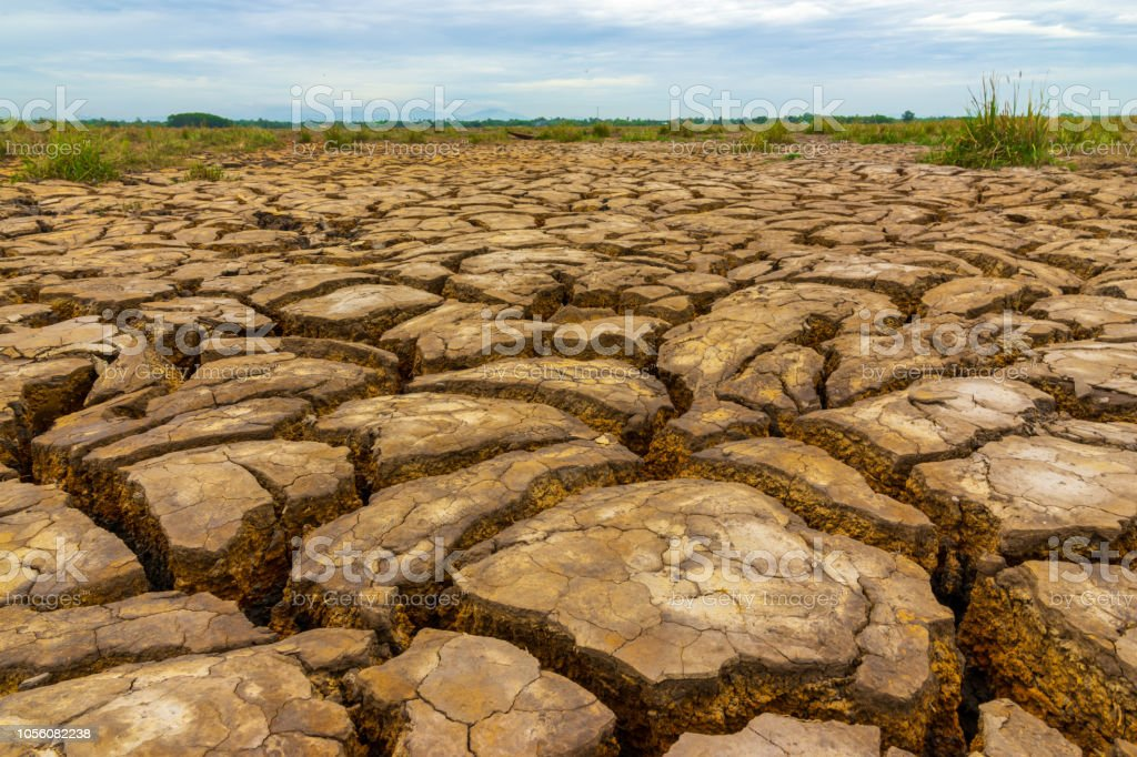 cracked soil from drought
