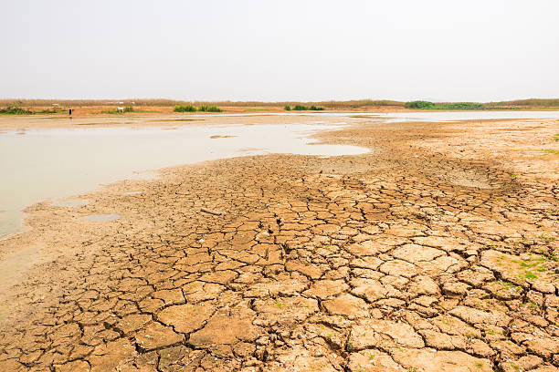 cracked soil in the bottom of a river showing drought - kuraklık stok fotoğraflar ve resimler