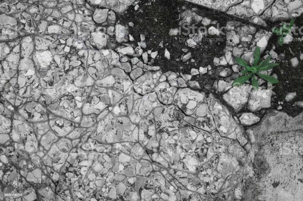 Cracked texture of small gravel stone with sprouts of grass in a concrete slab cement floor closeup royalty-free stock photo