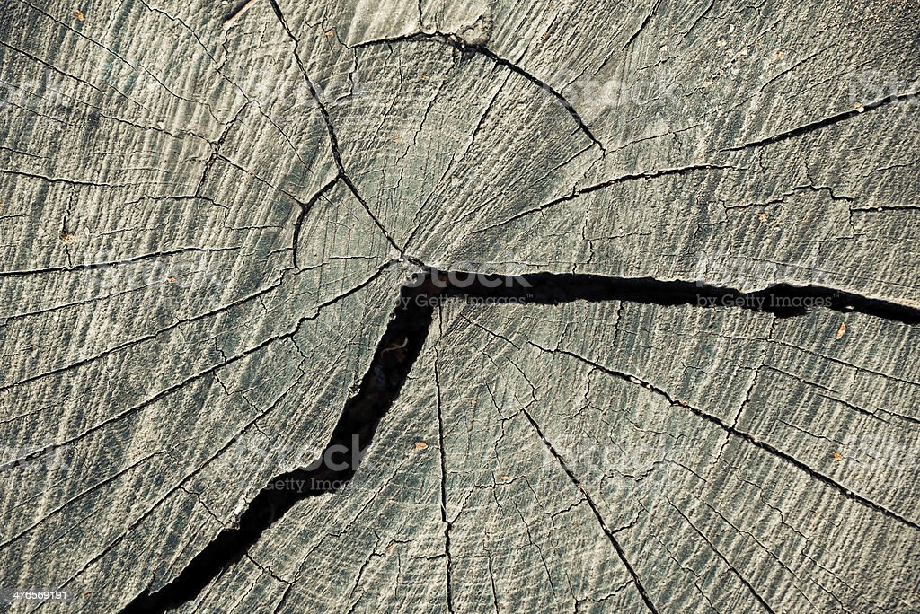 cracked wood royalty-free stock photo