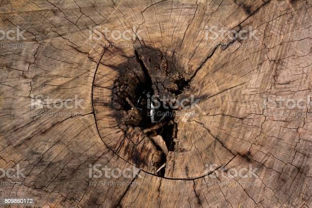 Cracked wood picture id809860172?b=1&k=6&m=809860172&s=612x612&h=wnnmhawjpmrfblmknog a ovjmaahjgskehxtsoehua=