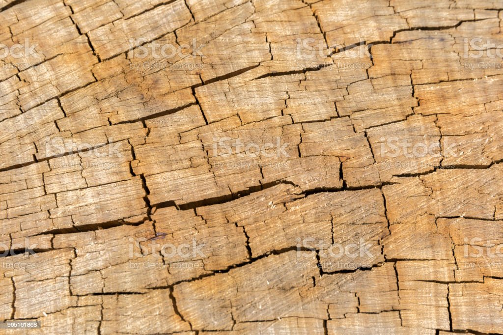 Cracked Wood Texture royalty-free stock photo