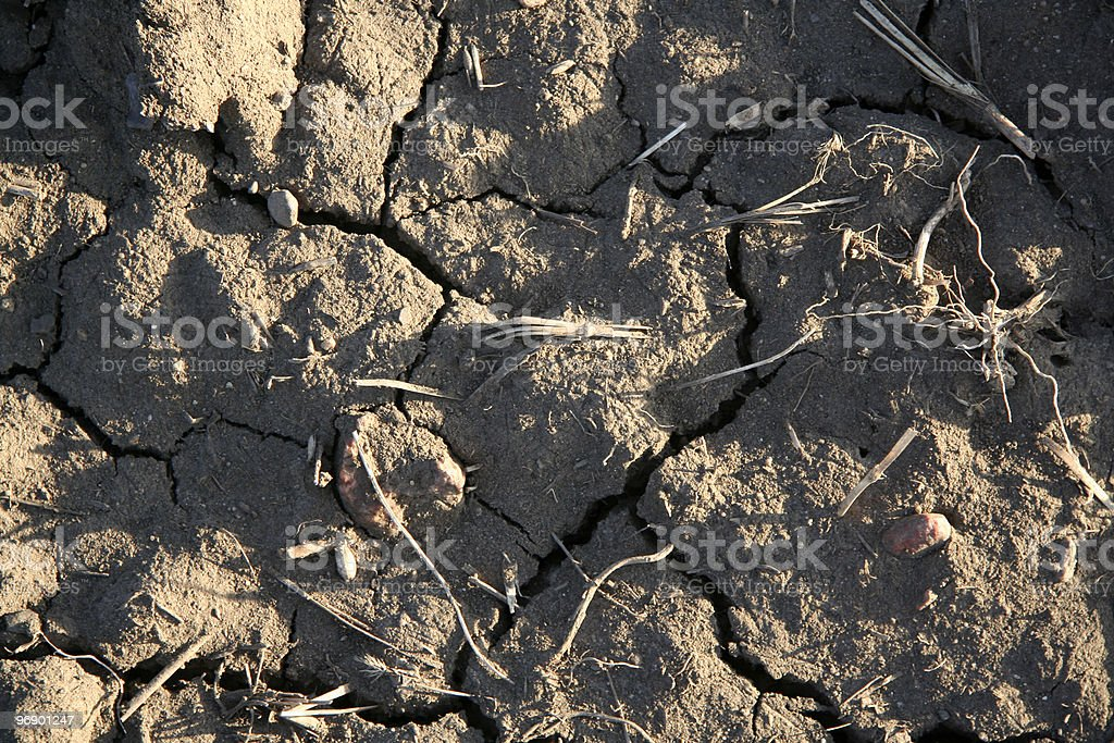 Cracks in Dry Soil royalty-free stock photo