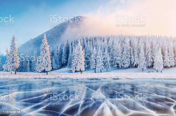 Photo of Cracks on the surface of the blue ice. Frozen lake in winter mountains. It is snowing. The hills of pines. Carpathian Ukraine Europe