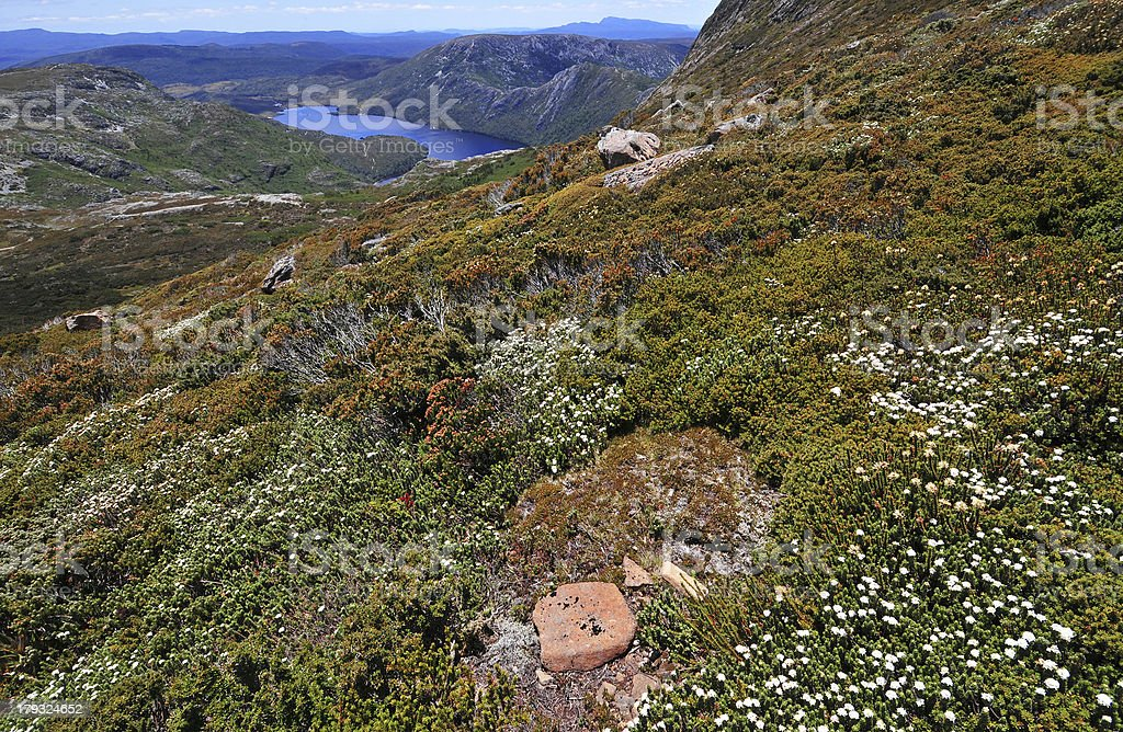 Cradle Mountain National Park, Tasmania stock photo