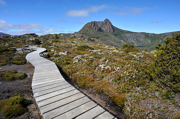 cradle mountain - cradle mountain stock photos and pictures