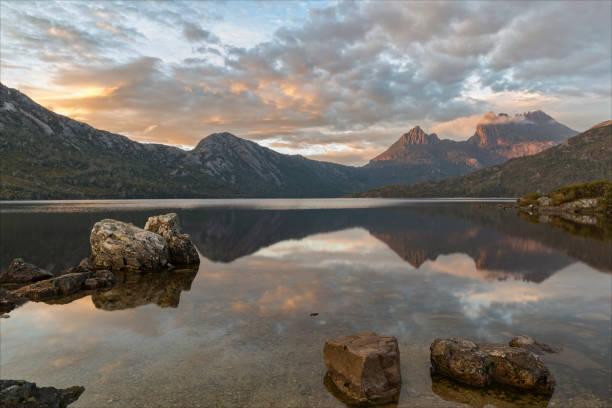 cradle mountain. tasmania - cradle mountain stock photos and pictures
