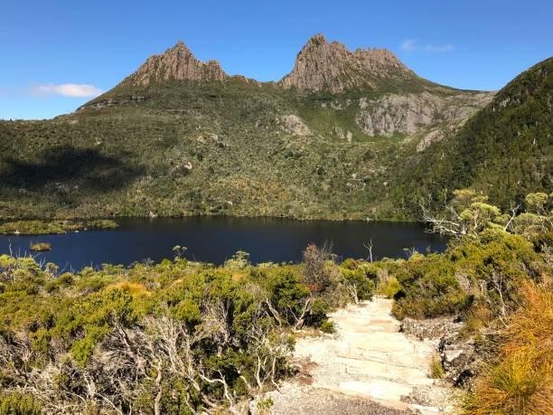 cradle mountain- tasmania - cradle mountain stock photos and pictures