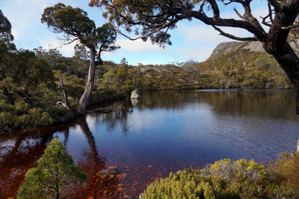 Cradle mountain view