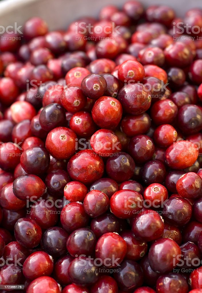Cranberries, Food for Christmas or Thanksgiving Holiday Cranberry Sauce royalty-free stock photo