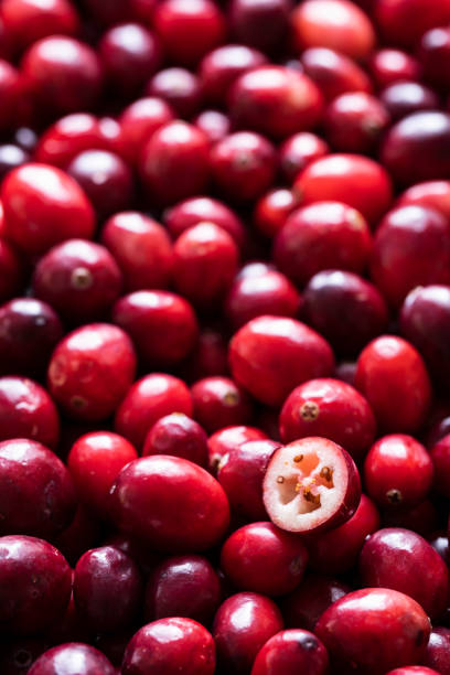 Cranberries Full Frame with One Cut stock photo