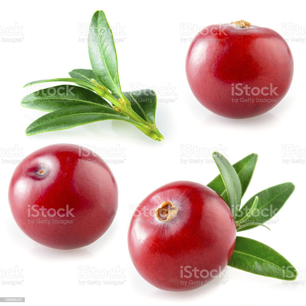 Cranberries isolated. Collection on white stock photo