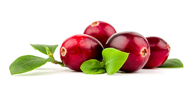 cranberries isolated on a white background - cranberry stock photos and pictures