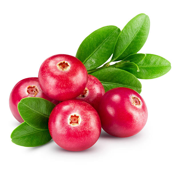 cranberries - cranberry stock photos and pictures