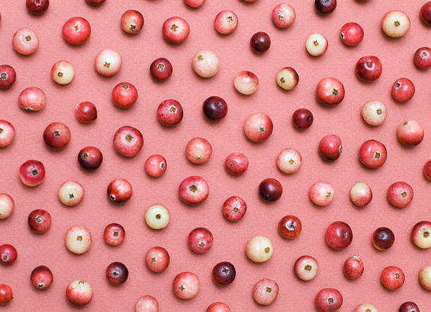 cranberry background - cranberry stock photos and pictures