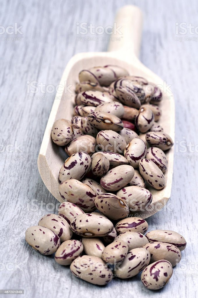 Cranberry bean stock photo