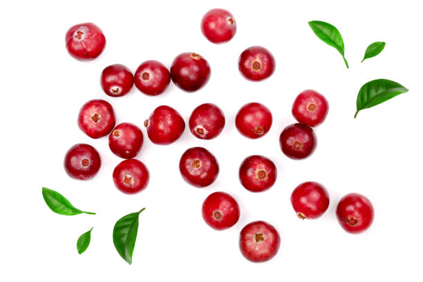 cranberry decorated with green leaves isolated on white background closeup top view - cranberry stock photos and pictures