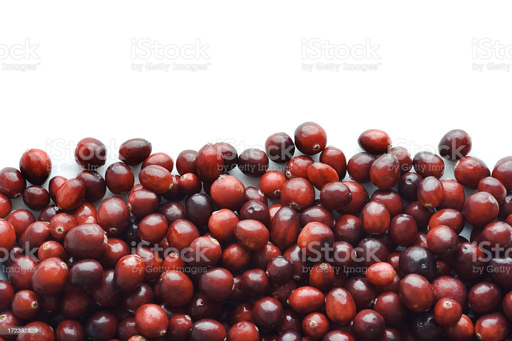 Cranberry Frame Border of Fresh Autumn Red Berry Fruit Heap royalty-free stock photo