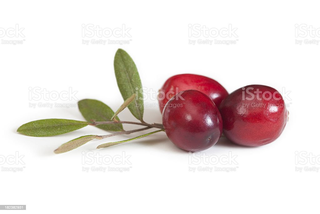 Cranberry Fruit and Leaves, Close Up stock photo