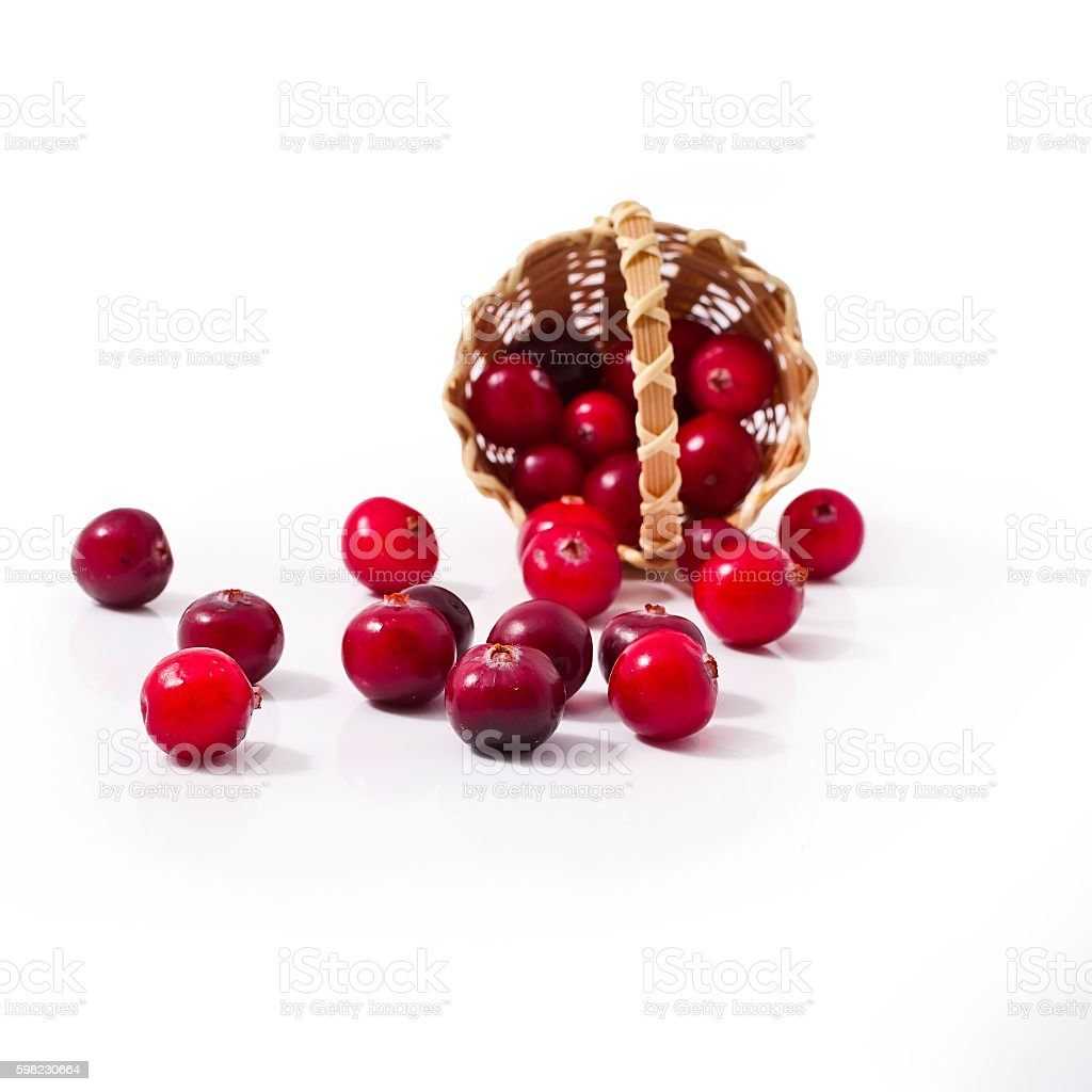 Cranberry in the basket foto royalty-free