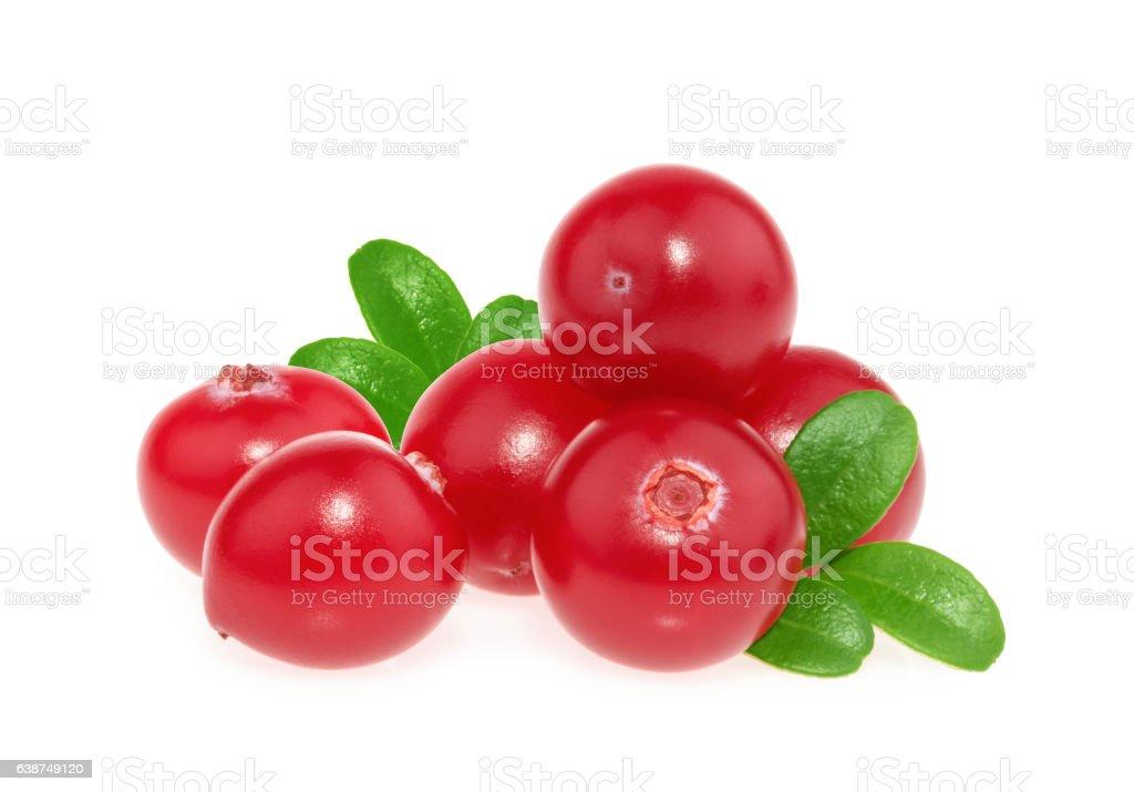 Cranberry isolated on white background stock photo