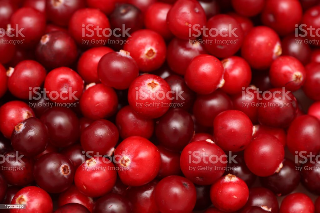 Cranberry royalty-free stock photo