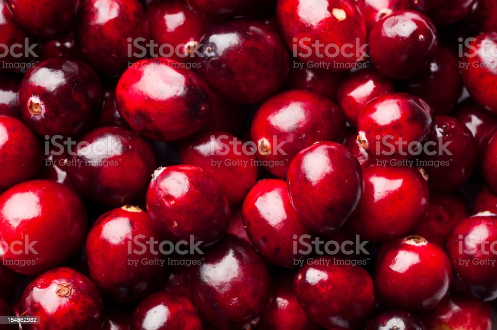 Cranberry stock photo