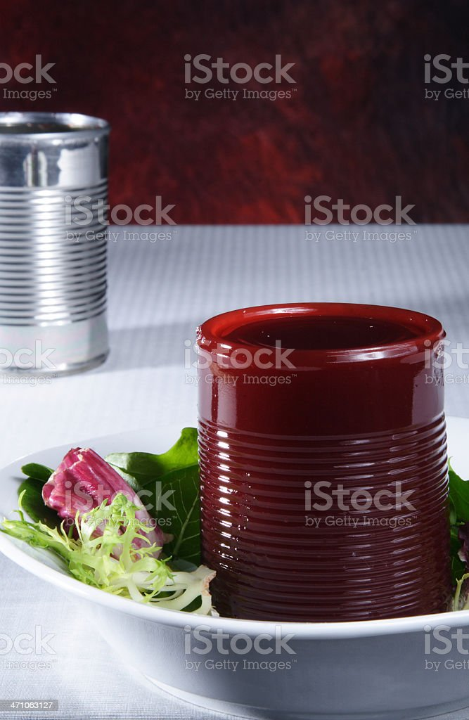Cranberry Sauce in a Can royalty-free stock photo
