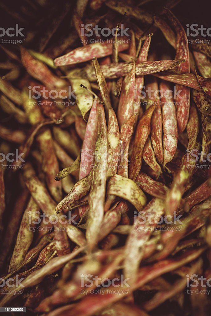 Cranberry Shelling Beans stock photo