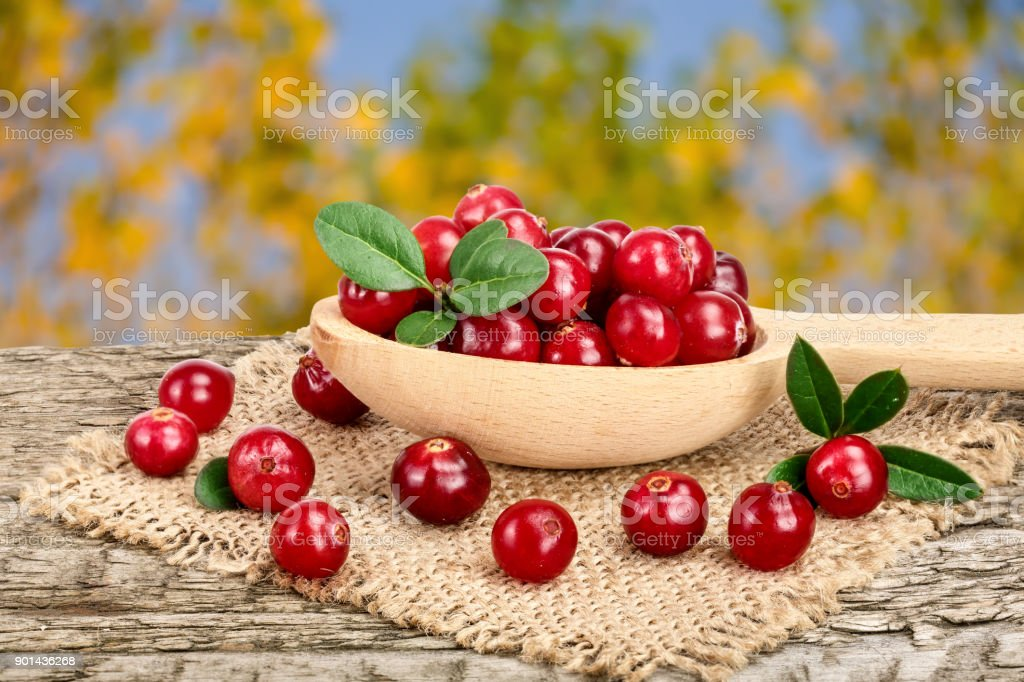 Cranberry with leaf in wooden spoon on old wooden table with blurry garden background stock photo