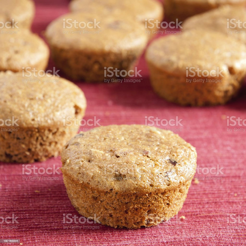 Cranberry-Pecan Overnight Oatmeal Muffins royalty-free stock photo