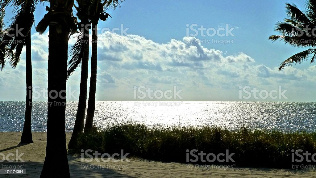 Crandon park beach stock photo
