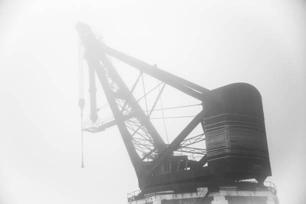 Kran und Nebel – Foto