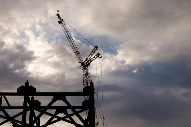 Crane at Dawn stock photo