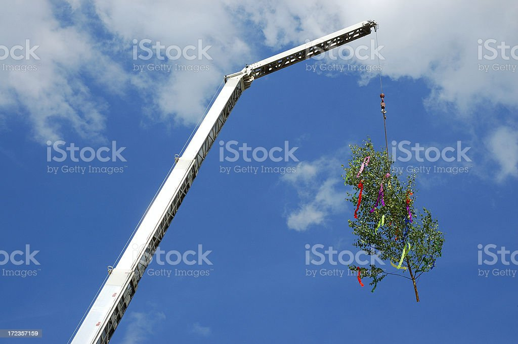 Crane lifting decorated Tree royalty-free stock photo