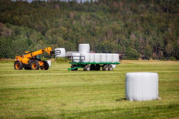 Crane picking silage balls stock photo