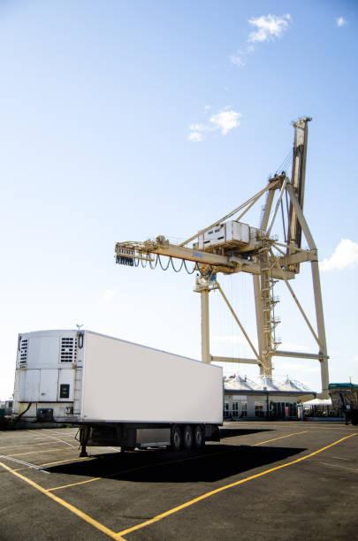 crane – zdjęcie