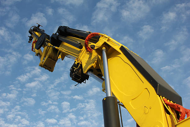 Crane Crane hooikoorts stock pictures, royalty-free photos & images