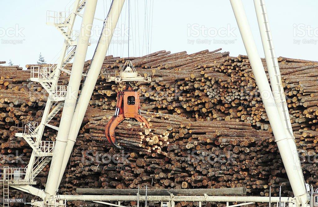 Crane stacking logs at lumber mill royalty-free stock photo