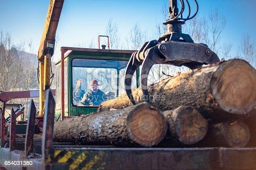 Crane unloading logs at timber yard.