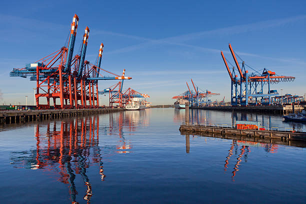 Cranes und Container – Foto
