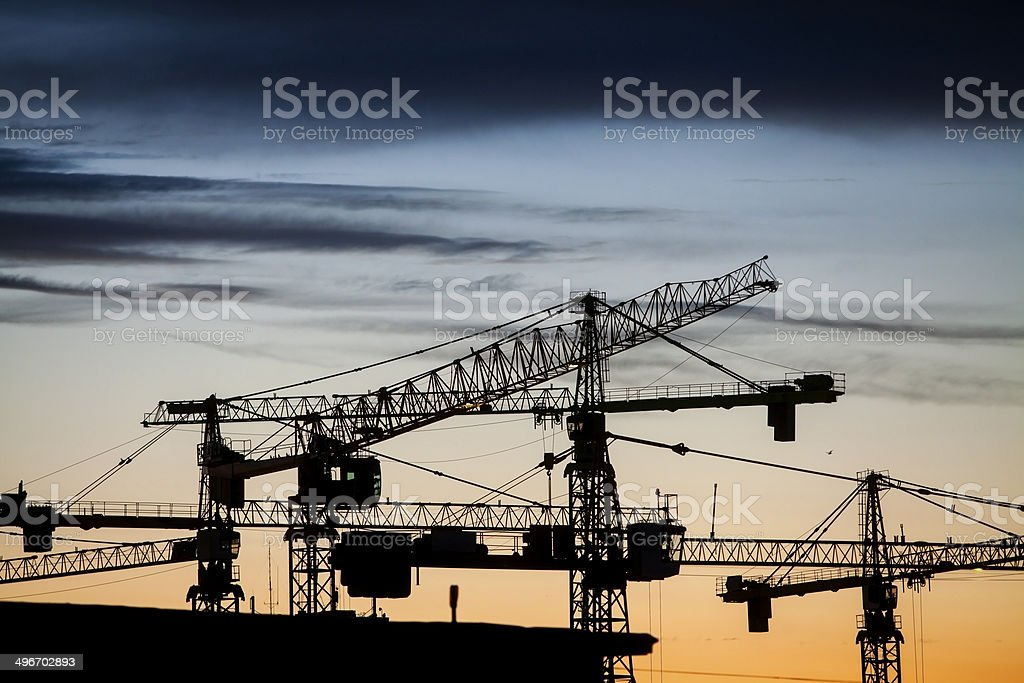 Cranes at dusk stock photo