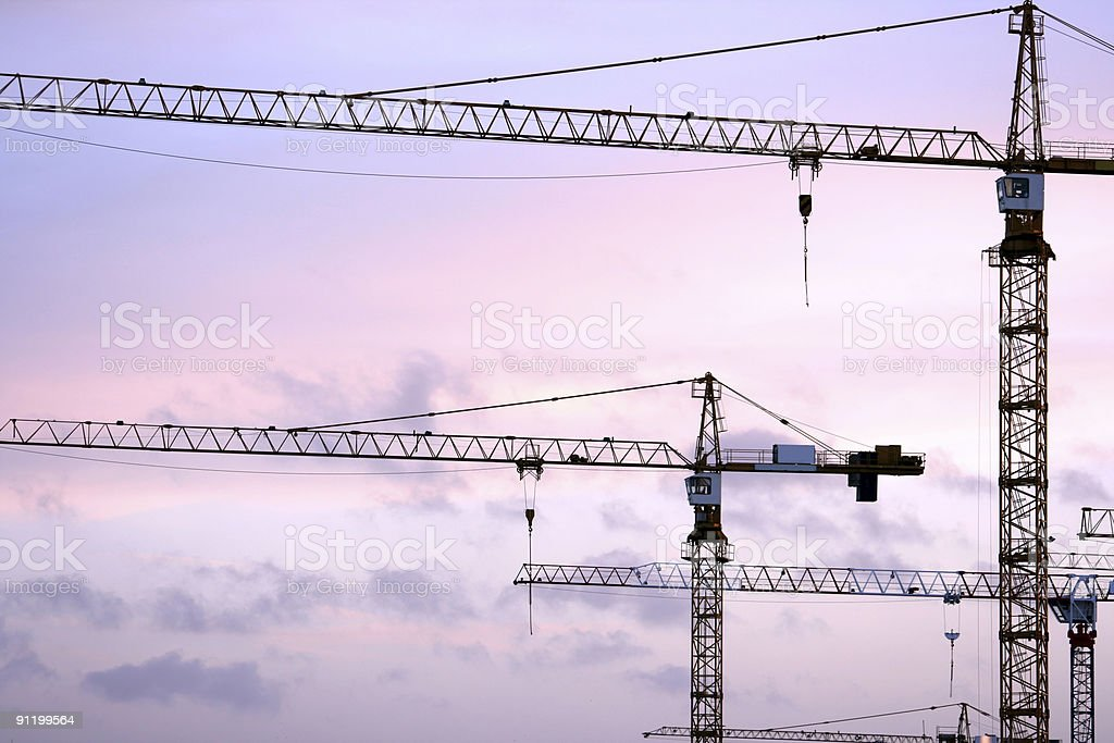 Cranes at sunset royalty-free stock photo