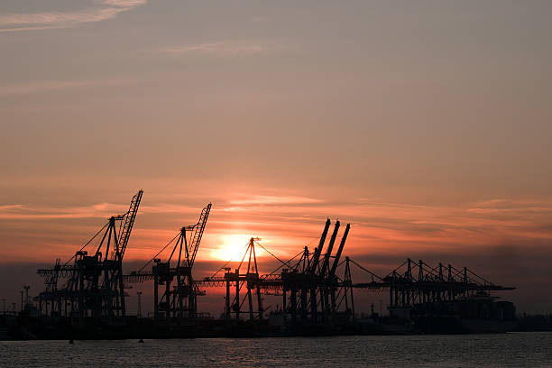 Cranes im Hamburger Hafen – Foto