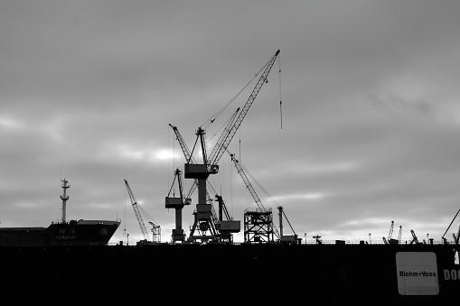 Cranes in the harbour of Hamburg
