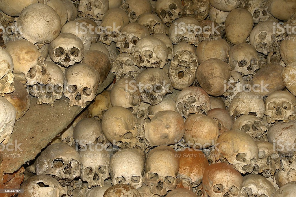 Cranium royalty-free stock photo