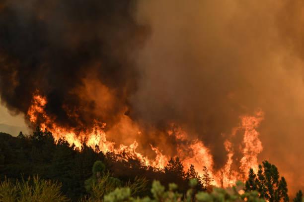 cranston fire - incendio boschivo foto e immagini stock